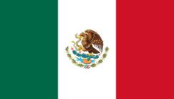 mexic logo steag