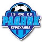 surdulica logo