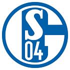 shalke logo