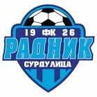 Radnik Surdulica logo